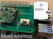 Remote Birding with TensorFlow Lite and Raspberry Pi